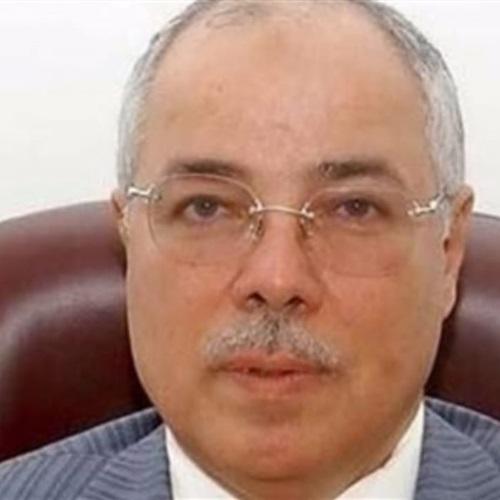 صدى العرب:  نصر الدين  يكرم ذوي الاحتياجات الخاصة في حلوان