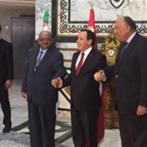 صدى العرب: سامح شكرى من تونس: نرفض التدخل الخارجى بليبيا