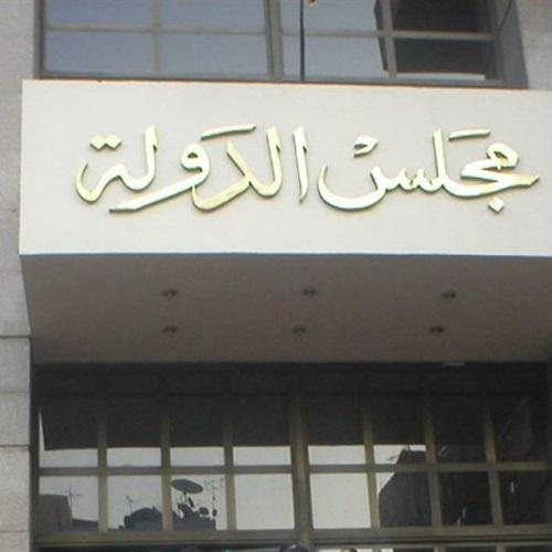 صدى العرب: حيثيات حكم رفض الطعن على إلغاء تسجيل طفل جنائيًا لسرقته  كيس فاكهة