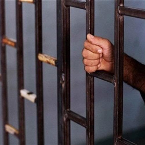 صدى العرب: حبس قاتل شقيقه بالطالبية وانتداب الطب الشرعي لتشريح الجثة